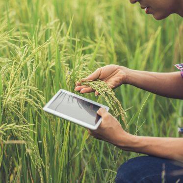 Is agritech the next edtech?